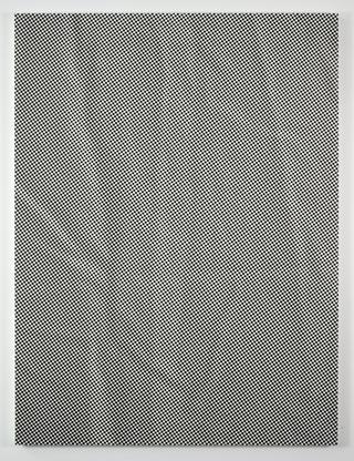 Tauba Auerbach Crease II 2009 acrylic and inkjet o...