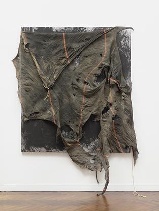 David Hammons, Untitled, 2014 acrylic on canvas wi...