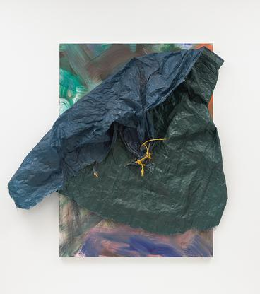 David Hammons Untitled 2017 acrylic on canvas, tar...